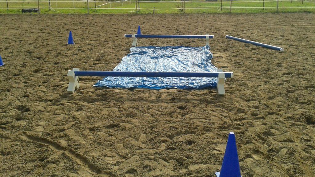Hindernisparcours als pferdegestützte Coaching Übung